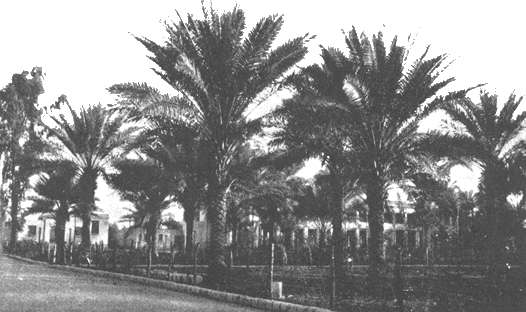 The Ridvan Garden in Baghdad, where Bahá'u'lláh announced the glad tidings that He is the Messenger of God for this age.